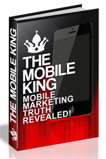 27-01-TheMobileKing