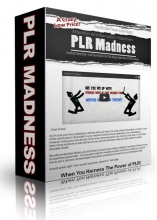 28-12-plr madness 1400 articles