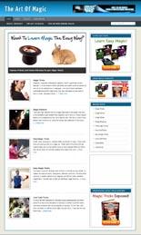 06-11-MagicNicheBlog